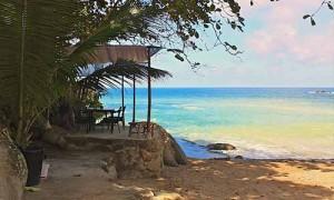 Iguana beach club patong phuket 8