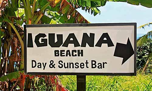 Iguana beach club phuket