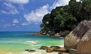 beach club patong/kalim/kamala