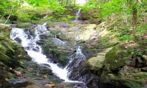 ton sai Phuket Waterfalls -5