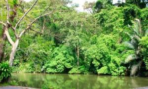 ton sai Phuket Waterfalls 4